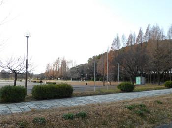 縮小-P1050210.jpg